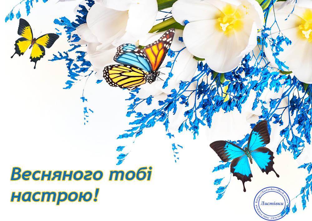 Вітальна листівка до 8 березня на українській мові