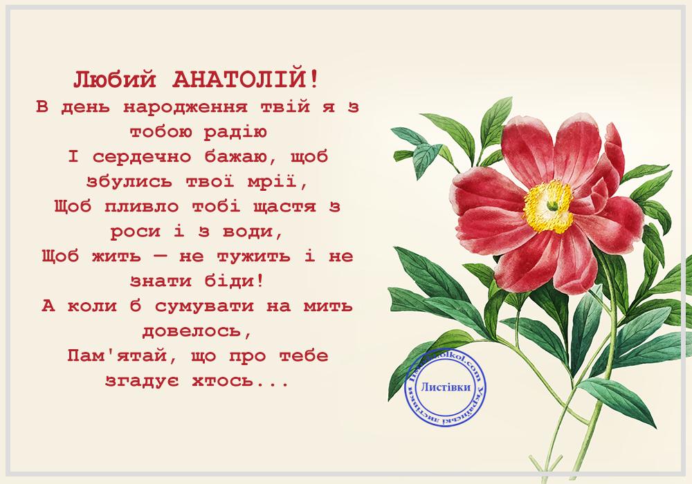 Українська вітальна відкритка з Днем Народження Анатолія