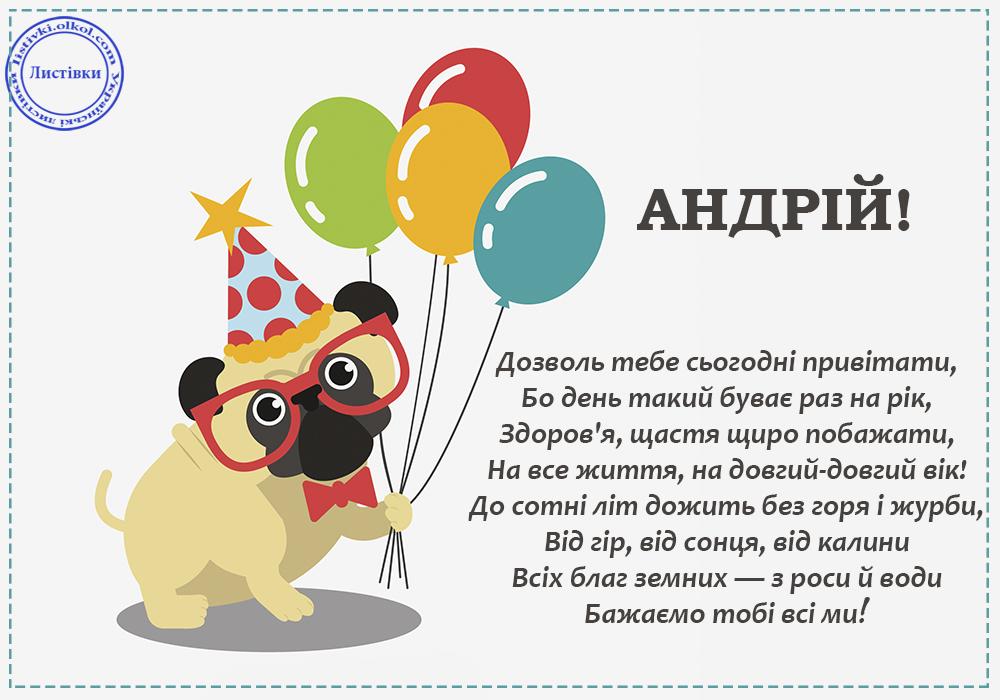 Прикольна українська вітальна листівка з Днем Народження Андрія