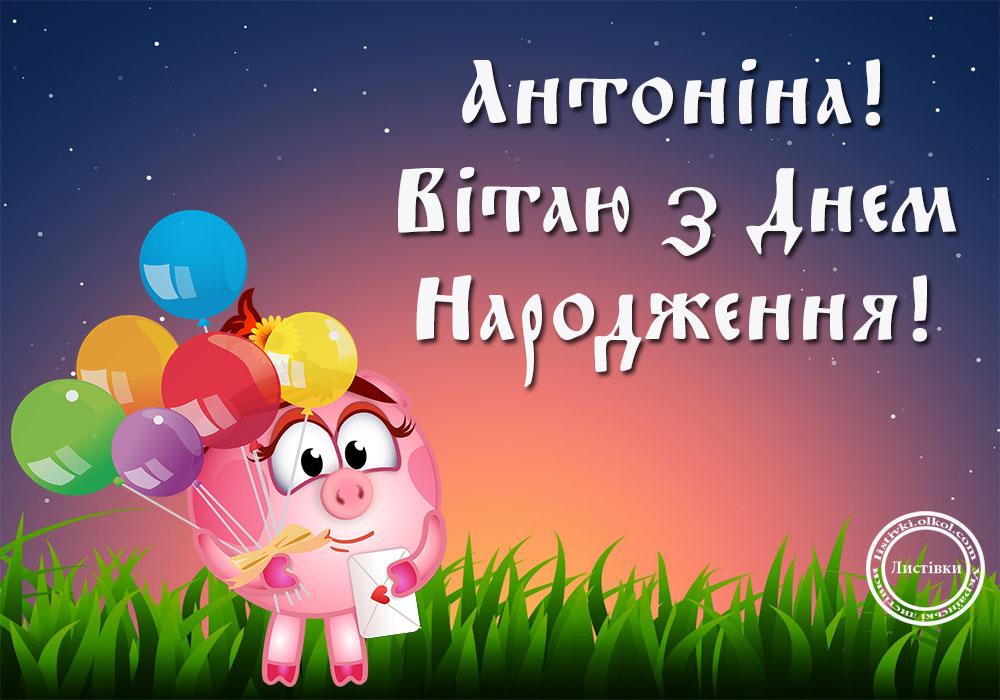 Прикольна вітальна листівка з днем народження Антоніні