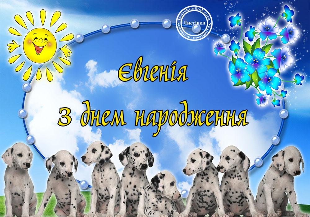 Українська вітальна листівка з днем народження Євгенії