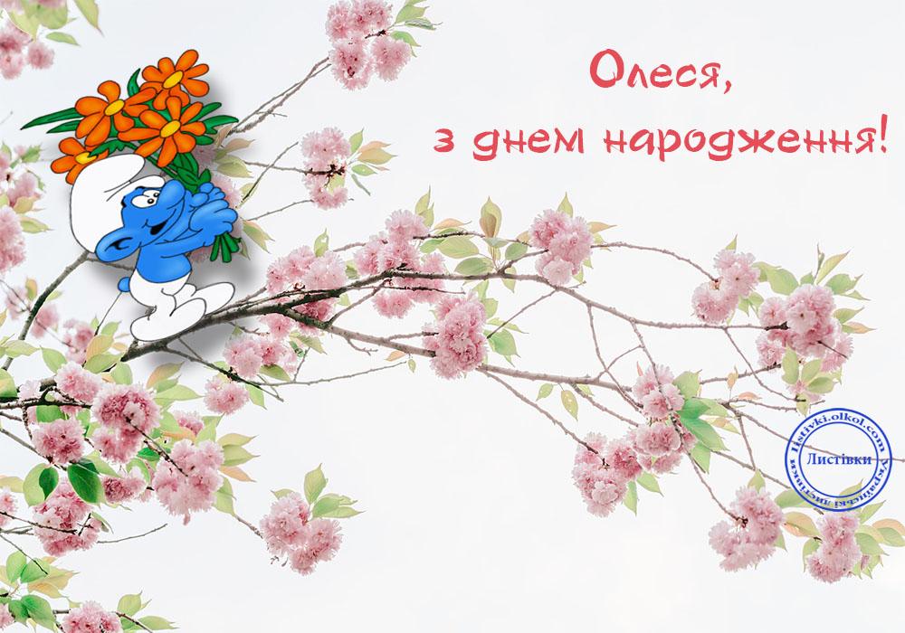 Прикольна листівка з днем народження Олесі