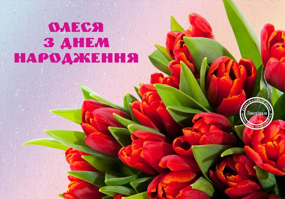 Красивые стихи с днем рождения олеся красивое поздравление 373