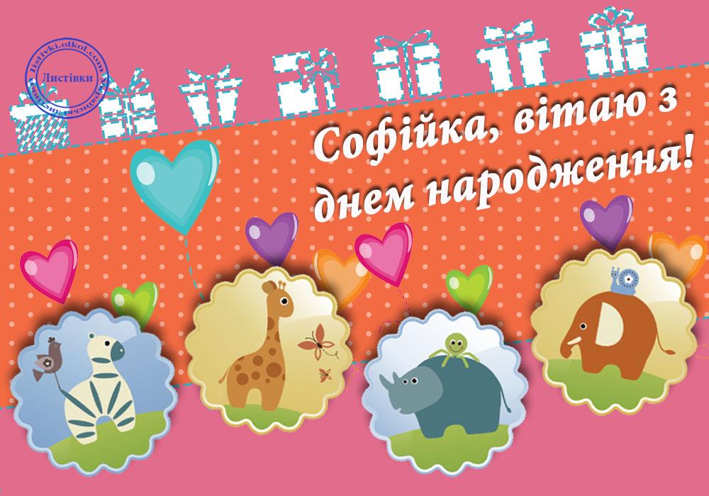 Відкритка з днем народження Софійці